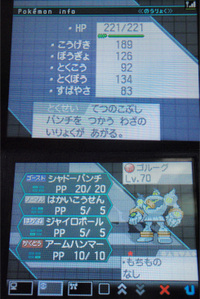 P8060024_1